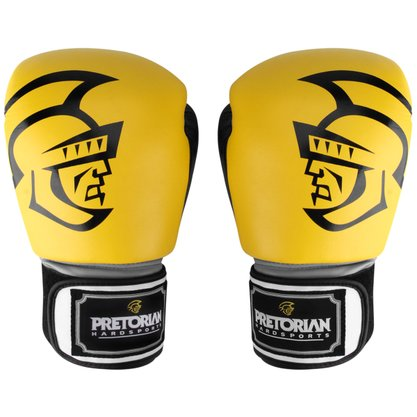 Luva de Boxe Training Pretorian 12oz