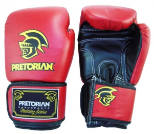 Luva de Boxe Standart Pretorian 14 oz