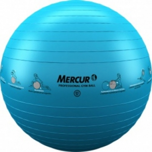 Gym Ball Professional 65cm - Mercur