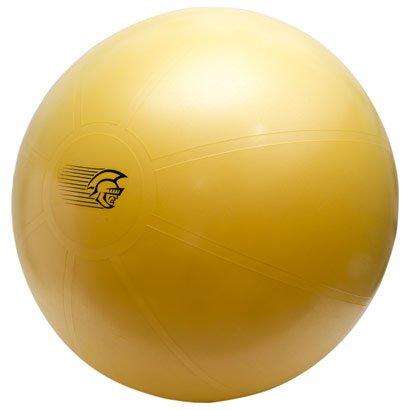 Bola de Ginástica Fit Ball Training 75cm - Pretorian Performance