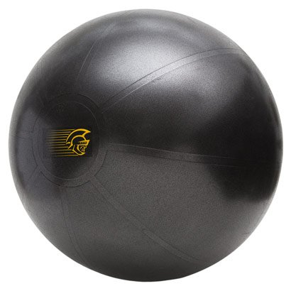Bola de Ginástica Fit Ball Training 55cm - Pretorian Performance