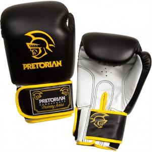 Luva de Boxe Standart Pretorian 16 oz