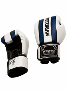 Luva de Boxe Training Pretorian 12 oz