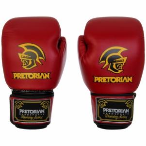 Luva de Boxe Standart  Pretorian 10 oz