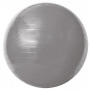 Gym Ball c/ Bomba de Ar 75cm Cinza - Acte